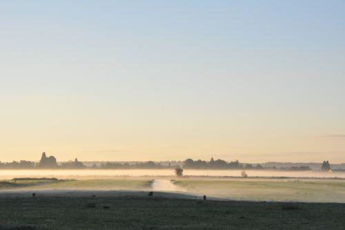 polder_in_de_mist